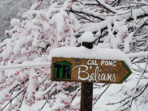 casa ruraral belians-Retol Belians